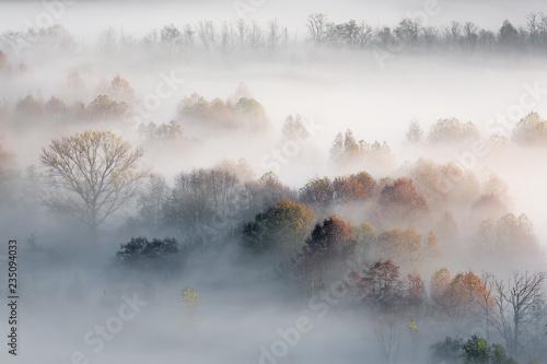 Paesaggio autunnale con nebbia e foschie, Lombardia, Italia Canvas Print