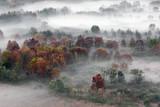 Jesień krajobraz z mgłą i mgłami, Lombardy, Włochy - 235094213