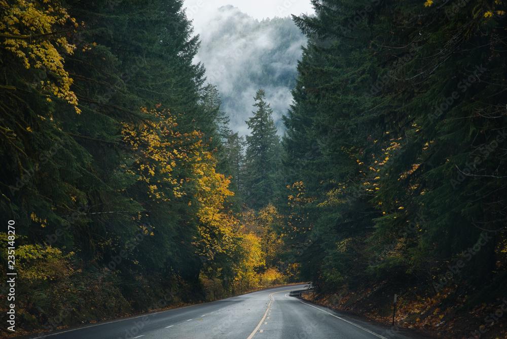 Fototapeta Oregon Roads & Autumn