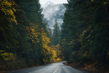 Oregon Roads & Autumn