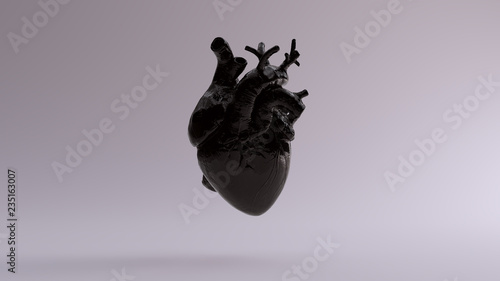 canvas print motiv - paul : Black Anatomical Heart 3d illustration 3d render
