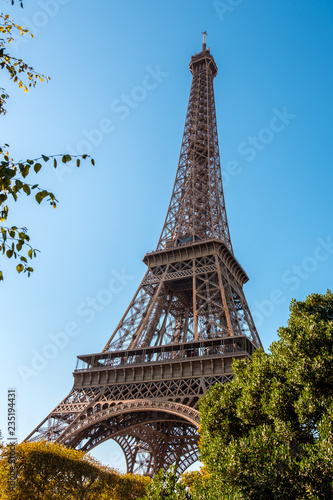 Photo Stands Paris View to Eiffel Tower through the trees