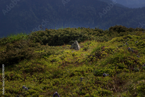 Foto op Plexiglas Nachtblauw Beautiful green mountains hills and cloudy blue sky