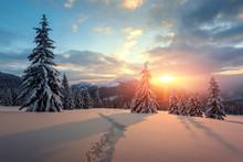 Fantastic Orange Winter Landsc...