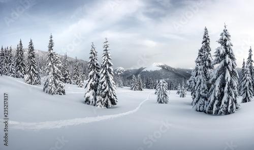 fantastyczny-zimowy-krajobraz-z-snieznymi