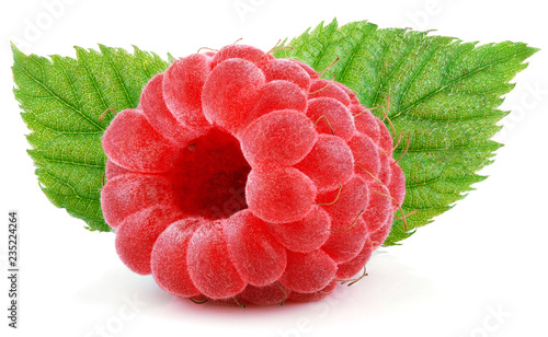 Ripe red raspberry berry fruit with green raspberry leaves isolated on white background. Full depth of field.