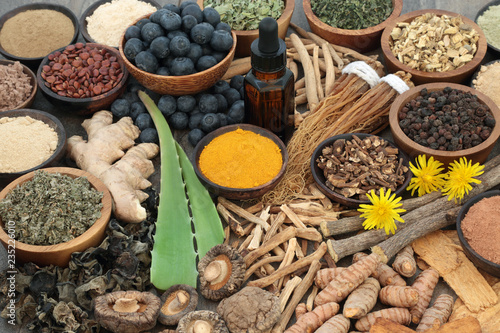 Photo Adaptogenic food collection with herbs, spices, fruit, essential oil and supplement powders