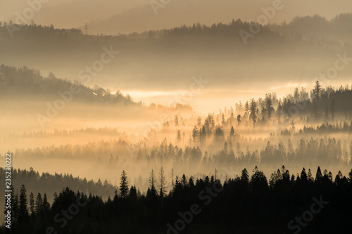 Poster Morning with fog Dawn in the Beskid Mountais