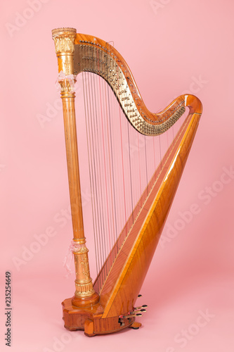 Tablou Canvas beautiful golden harp