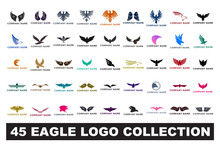 45 Eagle Logo Collection