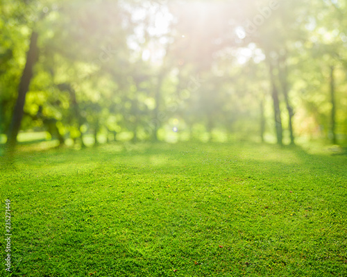 Deurstickers Tuin grass background