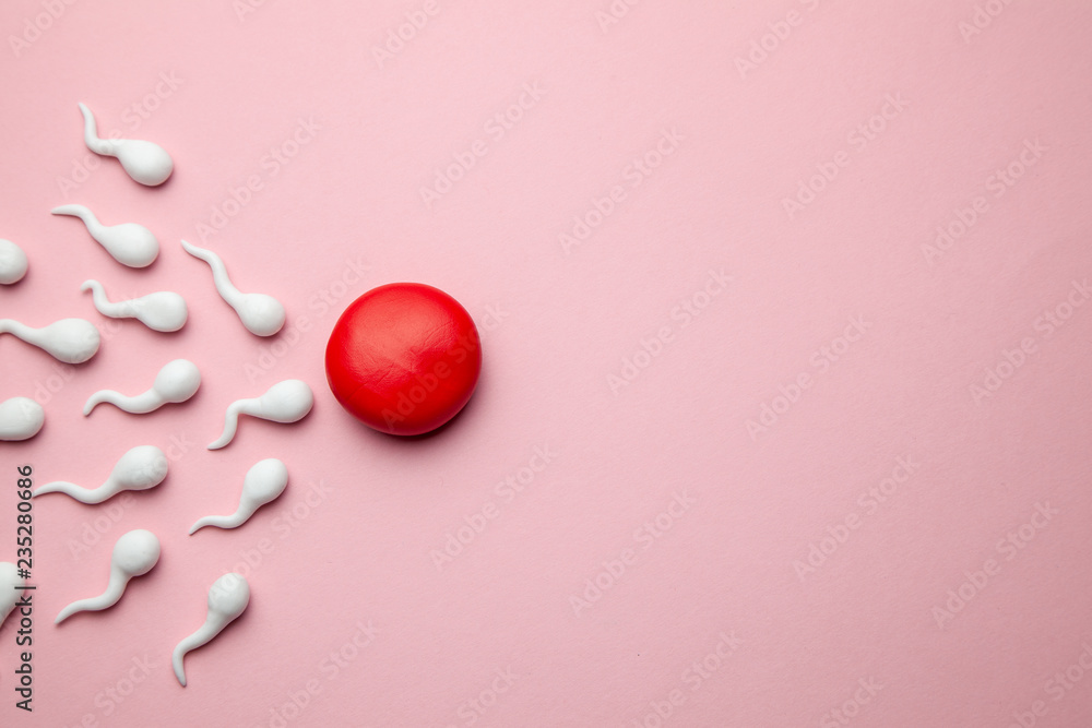 Fototapety, obrazy: Active sperm cells swim to the egg on a pink background. The concept of pregnancy, fertilization of the egg. Copy space for text