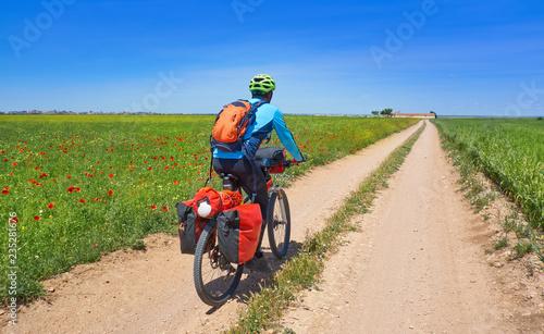 Biker by Camino de Santiago in bicycle Fototapet