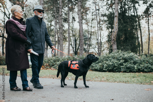 Valokuva Mature blind man with a long white cane walking in park with his wife and guide dog