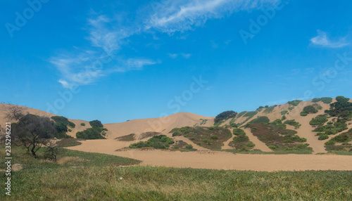 Tuinposter Centraal-Amerika Landen The famous dunes of the city of Concon on the coast of the Pacific Ocean, in Chile.