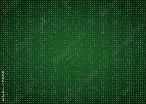 Green computer code vector background Wallpaper Mural