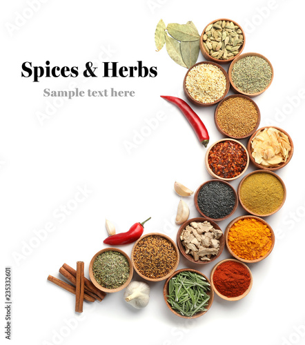 Beautiful composition with different aromatic spices on white background