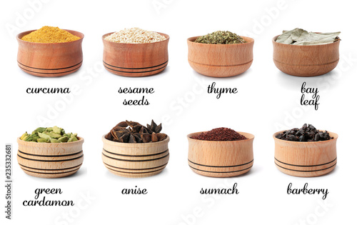 Wooden bowls with different spices and herbs on white background. Large collection with names
