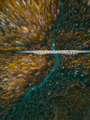 FototapetaHigh aerial drone view of an abandoned bridge running through the dense forest of the Pacific Northwest