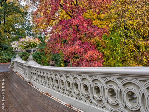 Canvastavla Central Park, New York City in autumn