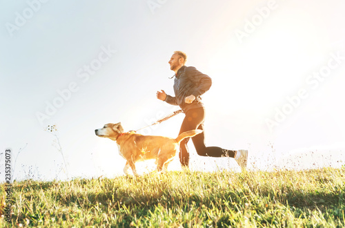 Obraz na plátně  Man runs with his beagle dog. Morning Canicross exercise