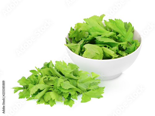 coriander leaves in the white bowl isolated on white background