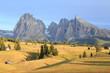 Alpe di Suisi - Dolomites - Italie