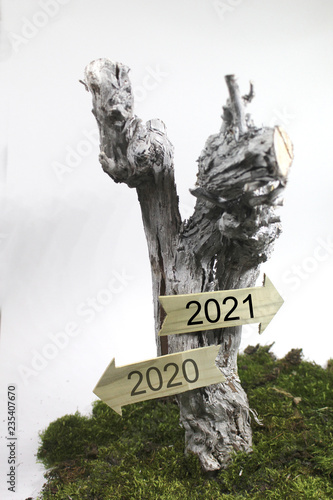 Fotografia  Jahreswechsel 2020 - 2021
