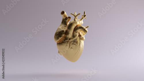 Fotografie, Obraz Gold Anatomical Heart 3d illustration 3d render