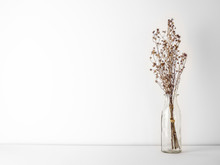 Bouquet Of Dried And Wilted Brown Gypsophila Flowers In Glass Bottle On White Floor And Background With Copy Space