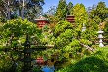 Japanese Tea Garden In Golden Gate Park Reflecting In One Of The Koi Ponds. San Fancisci, California