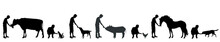 Vector Silhouette Of Man Who Give Food Animal On White Background.