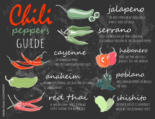 Chili peppers guide  Graphic vector illustration  Chalkboard