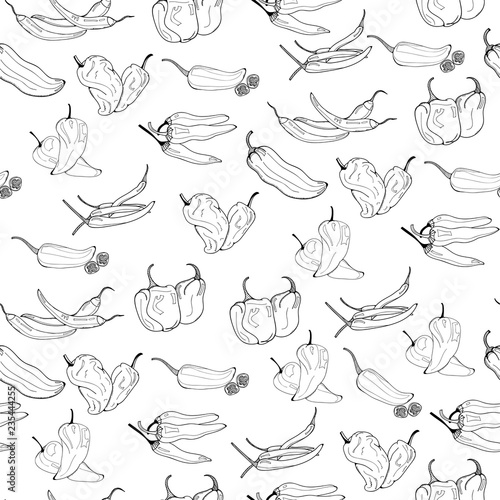 Cuadros en Lienzo Hand drawn chili peppers. Graphic vector seamless pattern