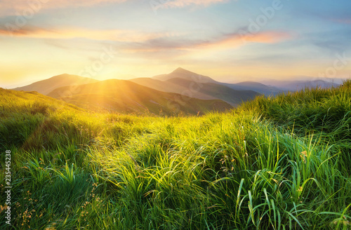 Foto auf AluDibond Gebirge Mountain valley during sunset. Field with fresh grass and the mountain hills. Natural landscape at the summer time