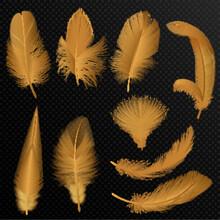 Realistic Luxury Golden Tribal Feathers Set Isolated On Black.