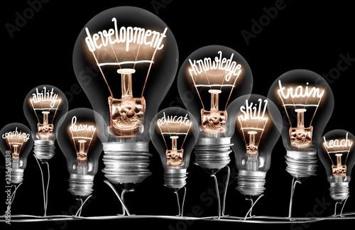 Fototapeta Light Bulb Concept obraz na płótnie