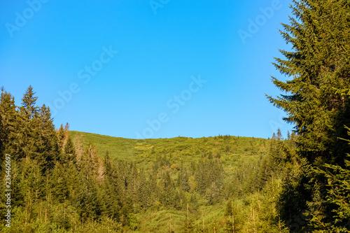Foto op Plexiglas Blauw multi level fields and forests in mountain area
