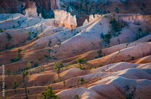 Staande foto Canyon beautiful landscape in Bryce Canyon with magnificent Stone formation