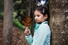 Little Girl Leaning On Tree Trunk Looking At Brown Leaf In Forest On Autumn Day. Cute Child With Blue Fleece Jacket Posing In The Woods During Fall Season