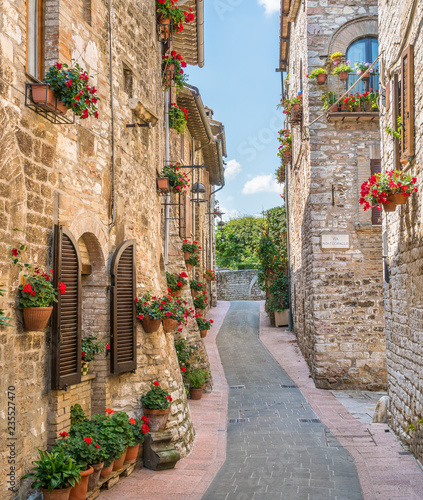 Fototapety, obrazy: A picturesque sight in Assisi. Province of Perugia, Umbria, central Italy.
