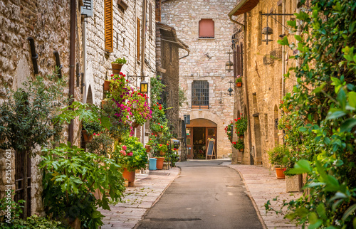 Aluminium Prints Tuscany A picturesque sight in Assisi. Province of Perugia, Umbria, central Italy.