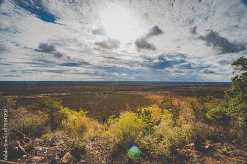 Fotografering  Weite Savanne in Südafrika