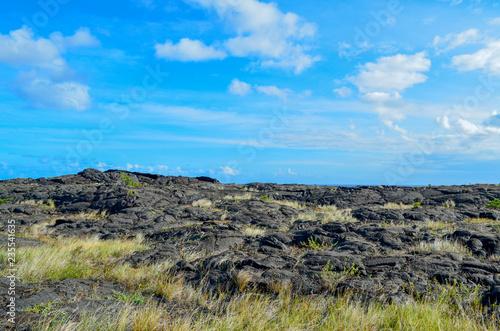 Foto op Plexiglas Blauw Old lava field on Big Island Hawaii
