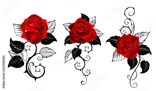 Three red roses for tattoo