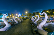 Swan Paddle Boats In A Lake At Night. These Are The Boats For Couples To Relax On The Weekend At The Large Lake In The Tourist City Of Da Lat, Vietnam.
