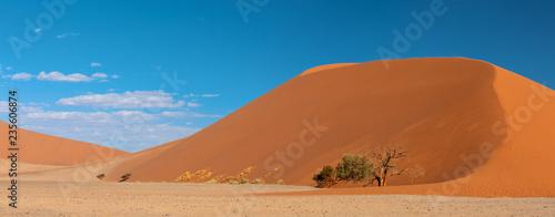 Fotografia Dune 45 in Sossusvlei, Namibia desert