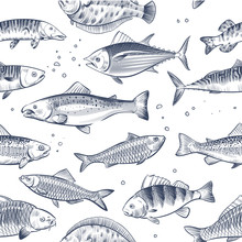 Sketch Fishes Seamless Pattern. Etched Ocean Fish Wrapper Vector Vintage Background. Fish Sea And Ocean, Seafood Seamless Marine Illustration