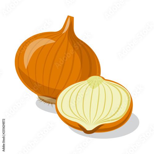 Fototapeta Isolated object of vegetable and fruit sign. Set of vegetable and vegetarian stock vector illustration. obraz