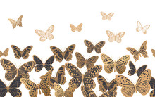 Seamless Pattern With Gold And Black Butterflies On A White Background
